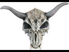 https://www.noelshack.com/2015-10-1425737347-masque-squelette-animal-adulte-halloween-206067.jpg