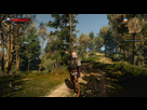 http://www.noelshack.com/2015-24-1433882078-witcher3-2015-06-09-21-09-51.png