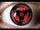 https://www.noelshack.com/2015-40-1443954034-android-image-10-04-2015.jpg