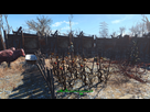 http://www.noelshack.com/2015-46-1447413397-fallout4-2015-11-13-10-50-44.png