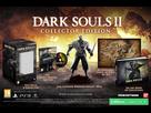 http://www.noelshack.com/2015-49-1449325684-dark-souls-2-edition-collector.jpg