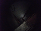 http://image.noelshack.com/fichiers/2016/02/1452780639-dscf5269.png
