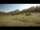 https://www.noelshack.com/2016-15-1460545618-battlefield-5-screenshot-1.jpg