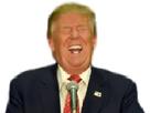 http://www.noelshack.com/2016-46-1479497077-trump.jpg