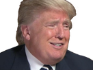 http://image.noelshack.com/fichiers/2016/47/1479917774-trump3.png