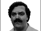http://image.noelshack.com/fichiers/2016/48/1480446627-pablito.png