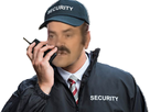 https://image.noelshack.com/fichiers/2016/50/1481829061-risitassecurity.png