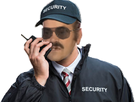 http://image.noelshack.com/fichiers/2016/50/1481829070-risitassecuritylunette.png