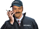 https://image.noelshack.com/minis/2016/50/1481829512-risitassecurity2-sourire.png
