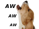 http://image.noelshack.com/fichiers/2016/52/1483099191-aw-dog-2.png