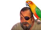 http://www.noelshack.com/2017-02-1483968100-pirate4.png