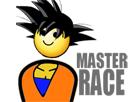 https://image.noelshack.com/fichiers/2017/02/1484144446-goku-master-race.png