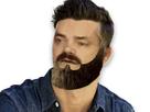 http://www.noelshack.com/2017-02-1484349569-barberisitassticker400x300.png