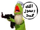 http://image.noelshack.com/fichiers/2017/06/1486510406-kermit-terroriste3.png