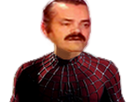 http://image.noelshack.com/fichiers/2017/13/1490832482-spider-risitas.png