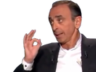 http://image.noelshack.com/fichiers/2017/15/1492377482-zemmour13.png