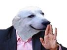 https://image.noelshack.com/fichiers/2017/16/1492388730-doggoenough.png