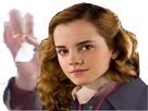 https://image.noelshack.com/fichiers/2017/16/1492574281-hermionep1.jpg