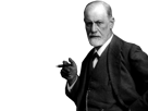 http://image.noelshack.com/fichiers/2017/17/1493158393-freud.png