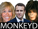 https://image.noelshack.com/fichiers/2017/20/1494802467-monkeyd.png