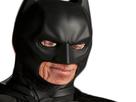 https://image.noelshack.com/fichiers/2017/20/1495050909-larry-batman.png