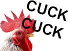 https://image.noelshack.com/fichiers/2017/21/1495991698-cuck.png
