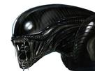 http://image.noelshack.com/fichiers/2017/27/3/1499257285-xenomorphe-alien-prometheus.png