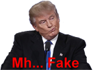 http://image.noelshack.com/fichiers/2017/27/7/1499609663-trump-fake.png
