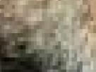 https://image.noelshack.com/fichiers/2017/30/1/1500895241-52-potxr1as.png
