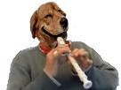 https://image.noelshack.com/fichiers/2017/30/2/1500966268-risidog-flute.png