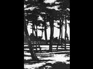 https://image.noelshack.com/fichiers/2017/32/1/1502141035-kino-no-tabi-v11-101.jpg