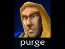 https://image.noelshack.com/fichiers/2017/33/3/1502906333-purge.png