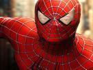 https://image.noelshack.com/minis/2017/34/5/1503614530-spiderisitas.png