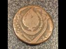 Indienne en cuivre  1503787948-img-0923