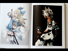 https://www.noelshack.com/2017-35-7-1504464094-bravely-second-design-works-the-art-of-bravely-2013-2015-artbook-9784757546356-2.jpg