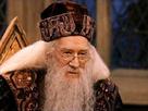 https://image.noelshack.com/fichiers/2017/36/6/1504960016-dumbledore.png