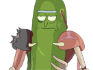 https://image.noelshack.com/fichiers/2017/36/7/1505054345-pickle-rick-warrior-cornichon.png
