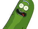 https://image.noelshack.com/fichiers/2017/36/7/1505054345-pickle-rick.png