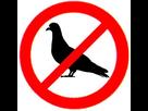 http://www.noelshack.com/2017-40-3-1507130950-interdit-pigeons.jpg