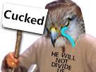 http://image.noelshack.com/fichiers/2017/42/2/1508212945-cucked.jpg