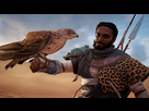 http://image.noelshack.com/fichiers/2017/43/4/1509050980-assassin-s-creed-r-origins2017-10-26-19-52-39.png