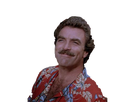 http://image.noelshack.com/fichiers/2017/45/5/1510312582-tomselleck-portrait-sourire-magnum-ok.png
