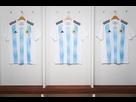 https://image.noelshack.com/minis/2017/45/7/1510521448-moyen-maillots-coupe-du-monde-2018.png