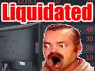 http://image.noelshack.com/fichiers/2017/47/1/1511151665-liquidated.png