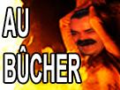 https://image.noelshack.com/fichiers/2017/47/4/1511459022-au-bucher.png