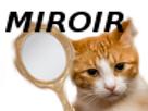 https://image.noelshack.com/minis/2017/47/6/1511600256-miroir.png