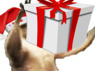https://image.noelshack.com/minis/2017/48/1/1511762068-kangourounoel1.png