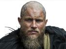 http://image.noelshack.com/fichiers/2017/48/6/1512170659-vikings.png