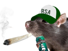 http://image.noelshack.com/fichiers/2018/02/3/1515609126-lsd-rsa.png
