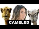 https://image.noelshack.com/fichiers/2018/02/5/1515752747-cameled-avenoel.png